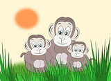 Happy Monkey Family