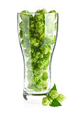 Beer goblet with aromatic hop and green leaves.