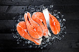 Salmon steaks on ice on black wooden table top view