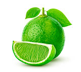 Single lime isolated on white background