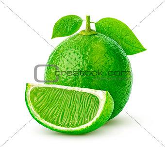 Single lime isolated on white background