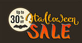 Discount 30 percent of Halloween holiday sale. Bat on full moon and lettering text