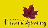 Happy Thanksgiving calligraphy text and autumn maple leaf. Greeting card for Thanksgiving Day
