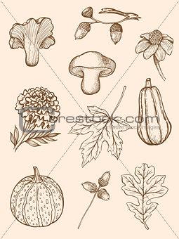Autumn design kit