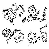 vector black and white vintage floral pattern set