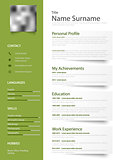 Professional green white resume cv with design elements