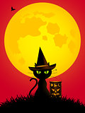 Halloween cat and lantern cartoons style