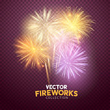 Vector Isolated Fireworks