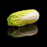 Head of lying chinese Peking cabbage