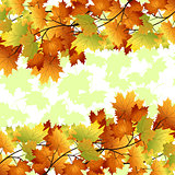 pattern with yellow and red leaves