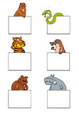 cartoon animal characters with cards set