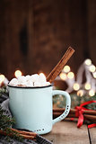 Cocoa with Marshmallows and Cinnamon Bark