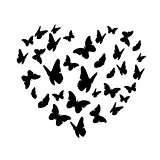 Beautifil Butterfly Heart Silhouette Isolated on White Backgroun