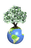 Money tree with euro banknotes on Earth