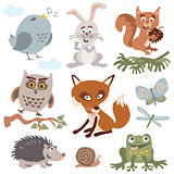 Set of cute forest animals cartoon vector