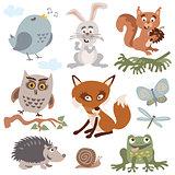 Set of cute forest animals cartoon vector
