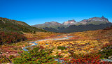 Gorgeous landscape of Patagonia's Tierra del Fuego National Park