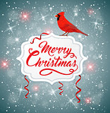Christmas banner with red cardinal