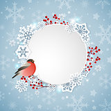 Bullfinch and white snowflakes