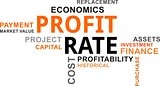 word cloud - profit rate