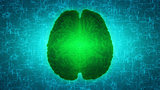 Glowing green brain wired on neural surface or electronic conduc