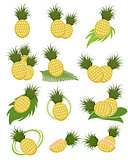 Different variants of pineapples