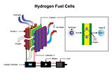 hydrogen fuel cells diagram.