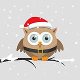 Christmas Male owl with Santa Claus hat