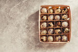 Quail eggs in a wooden box