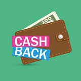 brown wallet icon cash back, finance mobile app icon