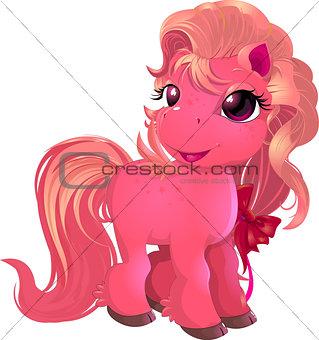 little beautiful pony