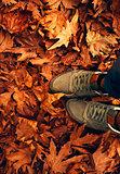 Autumn weather concept