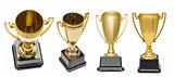 Winners gold cups