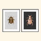 Beetle wall poster art designs vector.