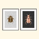 Beetle wall poster art designs vector.