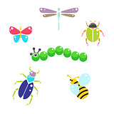 Cartoon insects colorful vector set on white.