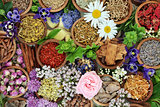 Natural Alternative Herbal Medicine