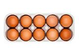 Raw farm fresh eggs in white paper tray