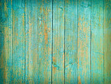Green wood background