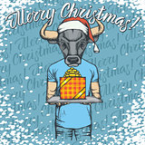 Vector illustration of bull on Christmas with gift