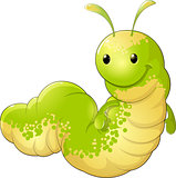 cute insect caterpillar