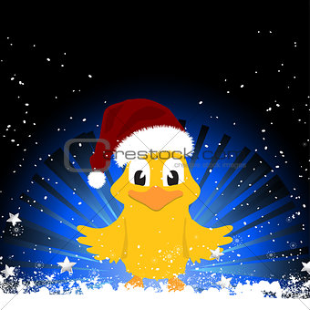 Christmas chick on festive background