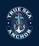 Colored vector anchor logo for any use