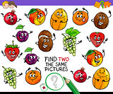 find two the same fruit characters game