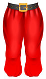 Red trousers of Santa. Traditional Christmas clothes