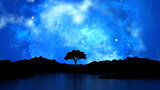 3D tree silhouetted against a starry night sky