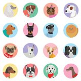 Vector seamless background with dogs icon flat design