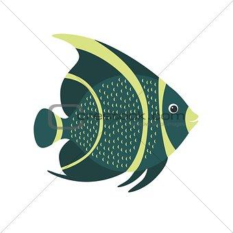 French angelfish Pomacanthus paru . Marine fish.