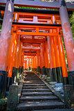 Fushimi Inari Taisha torii, Kyoto, Japan
