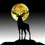dier black silhouette illustrastion of animal
